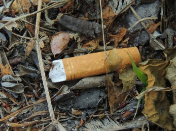 Smoking is a nasty habit, not just because of the fumes and risk of lung cancer. The amount of cigarettes irresponsibly thrown on the ground is extremely high, this adds to the already obscene pollution rate in the US, which is slowly eating away at the ozone layer.