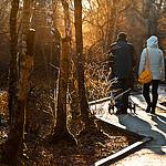 Photo Source: Flickr.com Totororo.roro